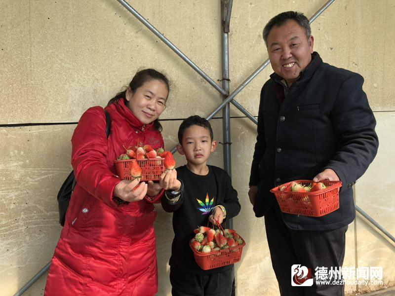 新春走基层丨夏津县双庙镇范楼村:扶贫大棚春意浓