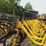 德州首批200余辆共享单车亮相中心城区