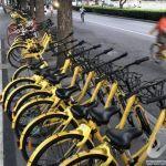 """我国首次明确共享单车属""""城市绿色交通"""""""