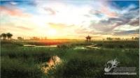 山东夏津九龙口国家湿地公园