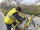小黄车集中开展单车维护保养