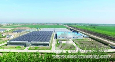 尚堂:驶入农业新旧动能转换快车道