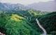 山东森林面积持续增长 37年累计义务植树44.9亿株