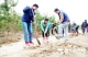 """建行德州分行""""德馨服务""""志愿者团队开展""""增绿减霾 馨满家园""""植树活动"""