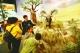 中小学生聆听国门生物安全知识讲解