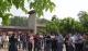 椹果采摘|第十一届夏津黄河故道森林公园椹果生态文化节即将开幕
