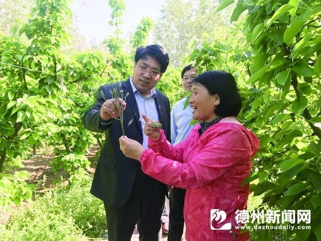 """农行齐河县支行:为乡村振兴输入金融""""血液"""""""