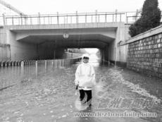 众志成城应对大雨
