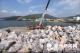"""中国拒收""""洋垃圾"""" 全球有上亿吨塑料垃圾待解决"""