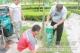 庆云县创卫办11处公园、广场等地绿化带进行捕蝇笼安装