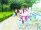 """长河街道长河社区开展""""整理共享单车·倡导文明生活""""主题志愿服务活动"""