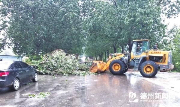挖掘机帮助清理路面