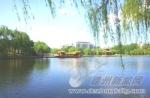 柳湖小湖风光
