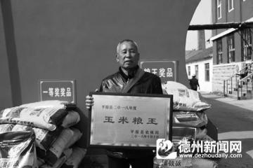 """现代农民的勤劳与智慧——平原""""粮王""""董振远的高产经"""