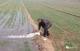 陵城:63万余亩农田实现高效节水灌溉