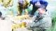 华奥农场:鱼虾质量安全可追溯
