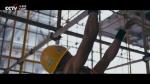 重磅微视频:《奋斗》.mp4