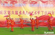 第六届农民文化艺术节成功举办