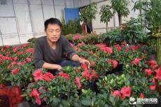 经济开发区花卉大棚种出致富路