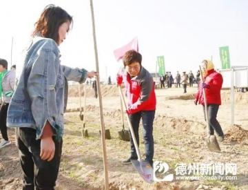 王洪霞袁志勇等县领导参加义务植树活动