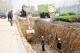 宁津投资3147万元实施道路雨污分流改造工程