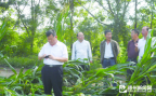 人保财险去年为betway官网种植业养殖业林业提供37.62亿元风险保障