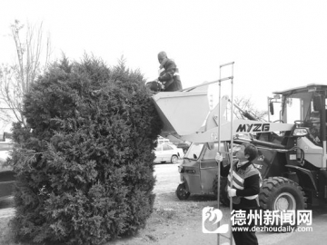 平原县公路局:修剪路树 优化道路环境