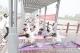 户外孕期瑜伽活动