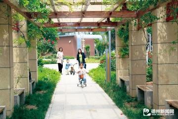 乐陵:出门满眼绿 移步皆美景