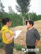 审计人员在乡村田间地头调查项目落实情况