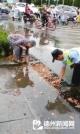 雨后路邊她徒手清理堵塞落葉  全城尋找好心老人