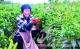 夏津县白马湖镇:种好菜园子 鼓起钱袋子