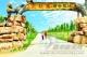 """灵韵陵城:全域旅游正""""加油"""""""