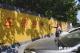 学校路段设禁停标线  仍有车辆乱停乱放