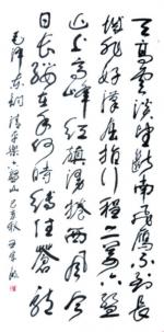"""王宗敏:钟情""""舒体""""数十年"""