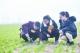 平原县乡村振兴桃园示范区:科学考核激发新活力