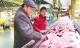 yzc555亚洲城猪肉鸡蛋价格稳中有降