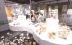 我省首家棉花主题博物馆在夏津建成