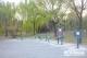 """亚博体育app安卓26件健身器材将在锦绣川""""上岗"""""""