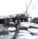 德州运河沿岸的劳动号子