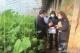 """德州:疫情令蔬果农产品严重滞销""""合同助农""""让百姓吃定心丸"""