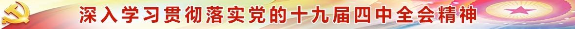 学习贯彻落实党的十九届四中全会精神