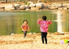 王卫红作品——趣味儿里的平原春光