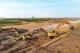 河道清淤水閘加固  德州重點工程施工掀熱潮