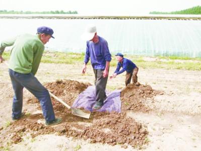 张华镇建立农村公路养护专业队伍
