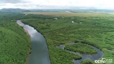 「幸福花开新边疆」额尔古纳湿地一角 绿意尽染山河远阔