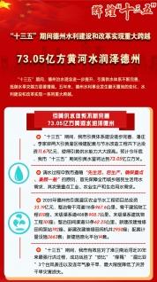 """辉煌""""十三五"""":73.05亿方黄河水润泽德州"""