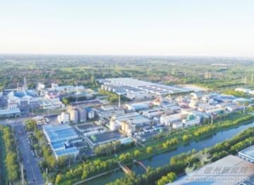 聚力大项目建设 引领高质量发展