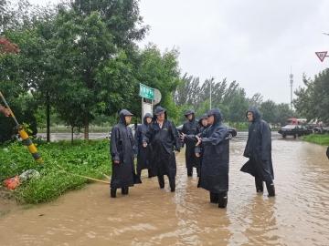 庆云县农业农村领域重点工作暨防汛工作专题会议召开