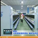 2013年11月13日陵县新闻